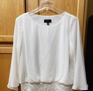 Collection Dress Barn Dressy Blouse Size 1x